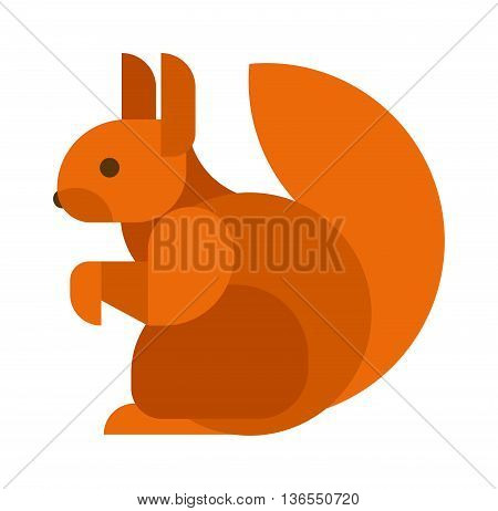 Young squirrel vector on white background. Fluffy nature vertebrate squirrel isolated animal. American paw vector tail adorable squirrel isolated domestic pretty carolinensis.