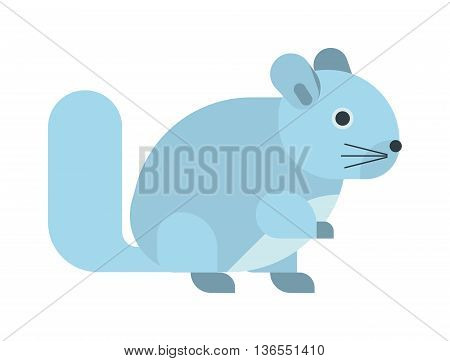 Young squirrel cute little wild animal funny rodent. Fluffy nature vertebrate squirrel isolated animal. American paw vector tail adorable squirrel isolated domestic pretty carolinensis.
