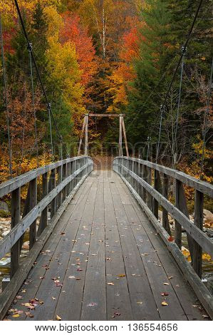 A wooden foot bridge crosses a river into a forest full of glorious fall colors in the White Mountains of New Hampshire.
