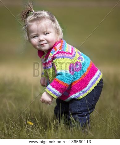 Cute, little girl, on a windy day, in a bright colored sweater, picking a dandelion.