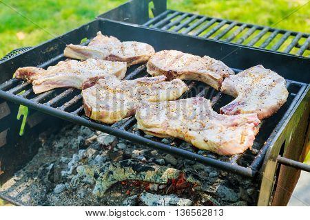 Juicy Stakes Cooking On Grill Barbeque Outdoors Countryside Meat Smoke