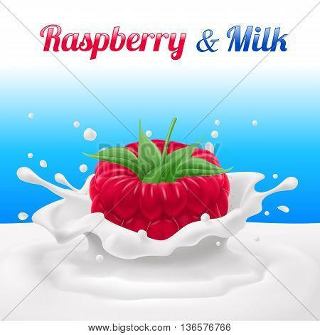 Raspberry Dipped in Milk with Splashes. Drop and Sweet Food and Fresh and Liquid