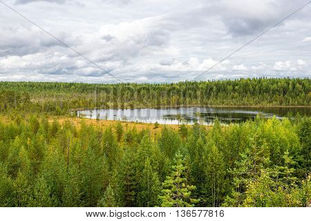 autumn landscape of pine forest in Russky Sever National Park north Russia