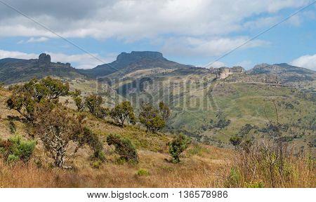 Landscape in Mount Elgon National Park Kenya