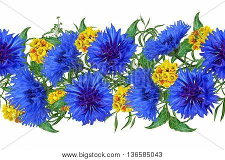 Horizontal floral border. Pattern seamless. Bouquet of blue cornflowers and yellow barberry. Isolated white background.