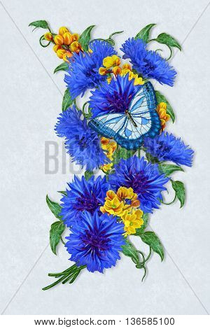 Flower composition. Bouquet of blue cornflowers and yellow barberry. Butterfly.