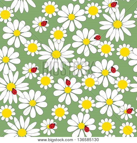Seamless Pattern With Daisies And Ladybirds