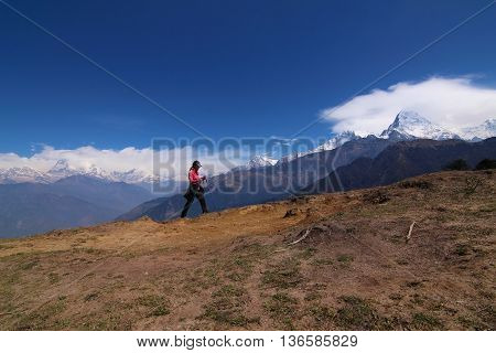 Women hiking with backpack holding trekking sticks high in the mountains covered with snow in summer. Landscape observation during a short break