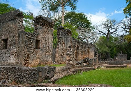 Remains Of  Gede, Near The Town  Malindi In Kenya, Africa