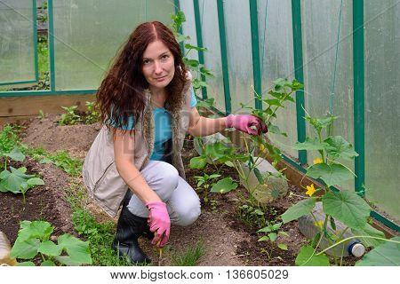 The Girl With The Green Thumb Shovel Loose Soil In A Greenhouse