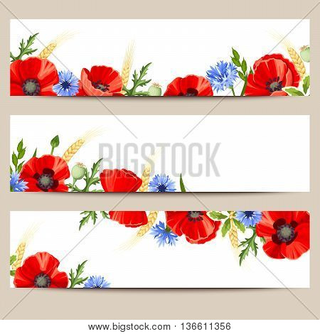 Set of three vector web banners with red poppies and blue cornflowers.