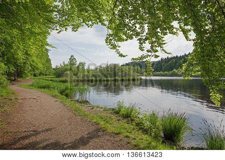 idyllic route for walking around deininger weiher upper bavaria