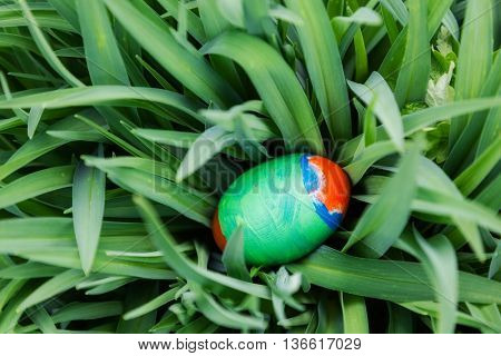 easter egg in plant. nature