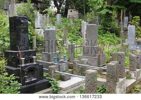 Cemetery In Tokyo