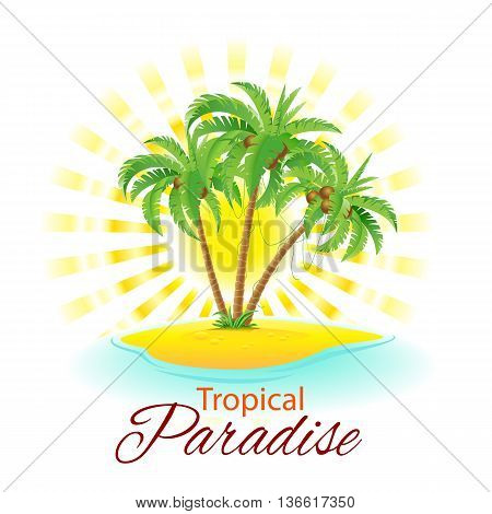Summer background with palm trees and sunlight