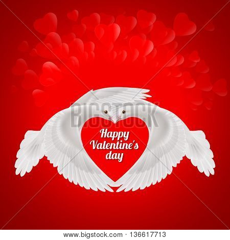 Two white doves makes the shape of the wings of the red heart. Love symbol