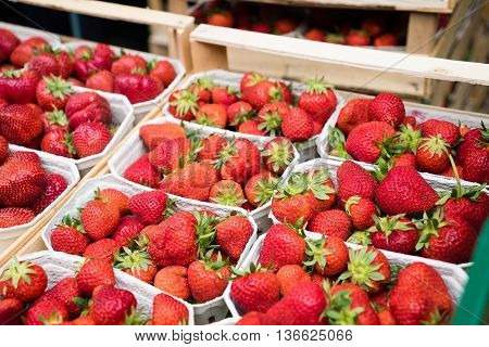Boxes of strawberries in farmer market. Crates full of fragaria. Selective focus and shallow dof.