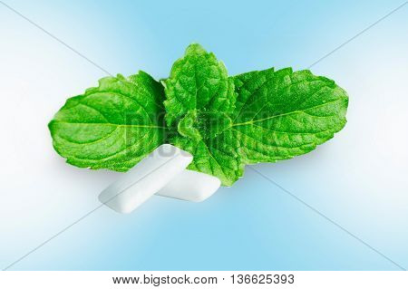 chewing gum with fresh mint leaves isolated on blue background