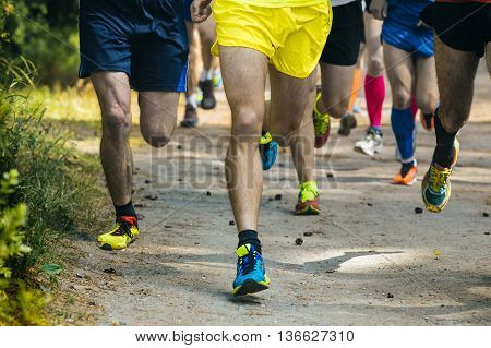 legs running athletes along a forest trail during marathon