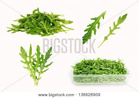 Arugula isolated on white background. Set of different foreshortening.