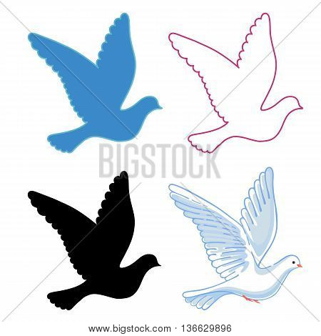 Soaring dove vector illustration isolated on background