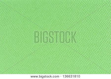 closeup texture and detail of green background or backdrop