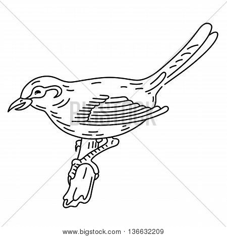Bird sitting on a branch vector illustration isolated on background