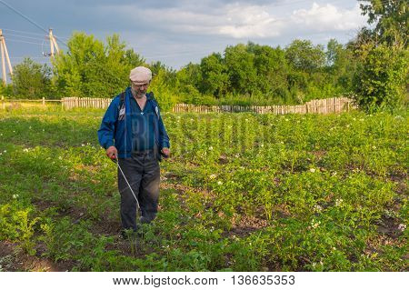 Ukrainian peasant processing potato plantation with insecticide liquid for Colorado beetle control