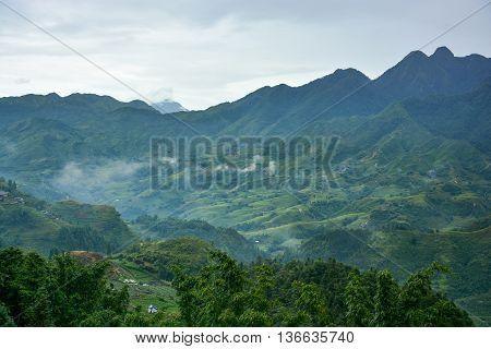 Beautiful Fansipan mountain landscape and rice field terraced in rainy season of Sapa, Lao Cai, Vietnam