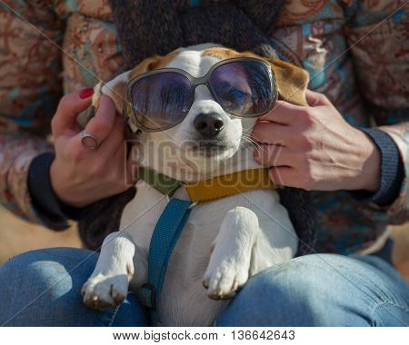 woman wore sunglasses to his dog looking