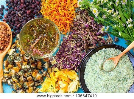 Hot herbal tea a set of dried flowers and berries herbs oak bark sea salt on old wooden table. Alternative medicine homeopathy