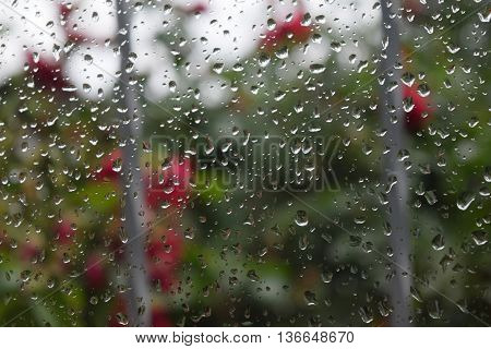 Water drops on glass summer rain clouds