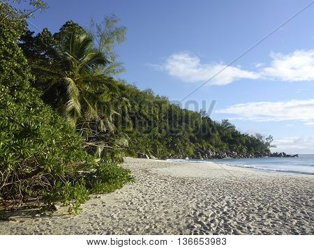 Beach Of Anse Georgette, Seychelles