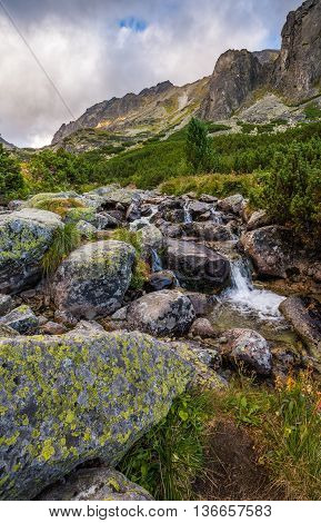 Mountain Landscape with Vegetation and Creek in Foreground on Cloudy Day. Mlynicka Valley High Tatra Slovakia.