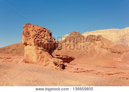 The Mushroom and the Half - Sandstone geological attraction in Timna Park Israel