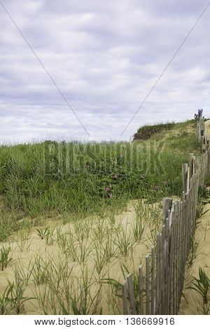 Marconi Beach area with fence, Wellfleet MA, Cape Cod