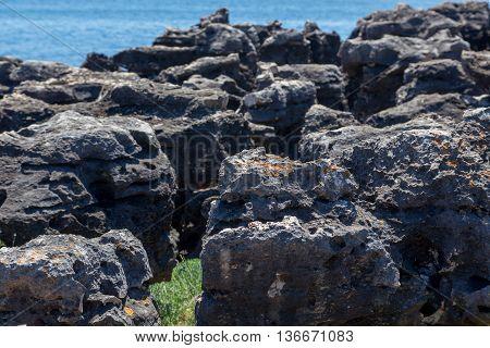 Rocks On Coast Of Ocean