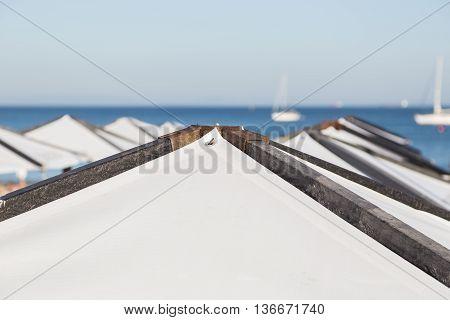 Triangular Umbrellas On Seaside Beach