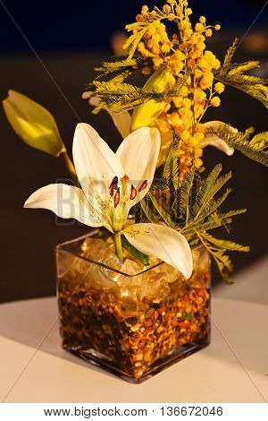 Orchid And Mimosa In Ikebana