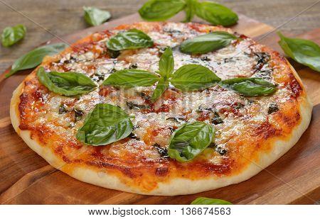 Italian pizza margarita on a wooden background