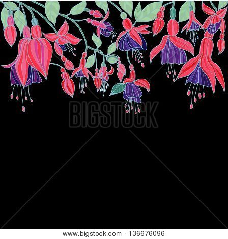 Attractive summer garden background Hand drawn Beauty Floral texture with Fuchsia flowers Vector illustration