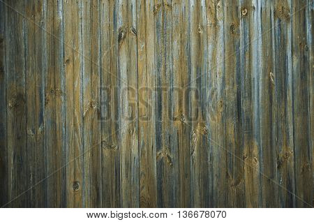 wooden planks with protruding pine resin texture