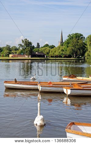 STRATFORD-UPON-AVON, UK - JUNE 12, 2014 - Rowing boats and swans on the River Avon Stratford-upon-Avon Warwickshire England UK Western Europe, June 12, 2014.