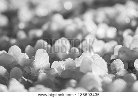 Little round icicles formed around grass leaves on the ground