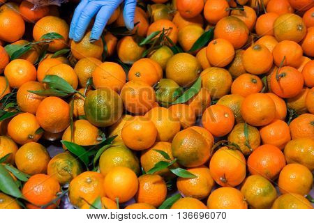 Fresh mandarin oranges fruit with leaves as background