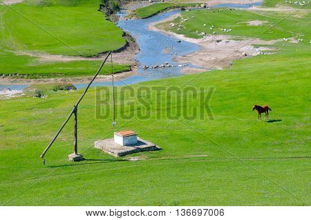 A Green meadow, river and well Crane