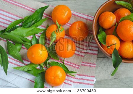 Ripe Tangerines On Canvas Background
