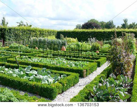 Old vegatable garden in a midieval desing