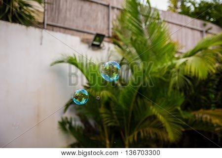 Soap bubbles fly in the house garden.