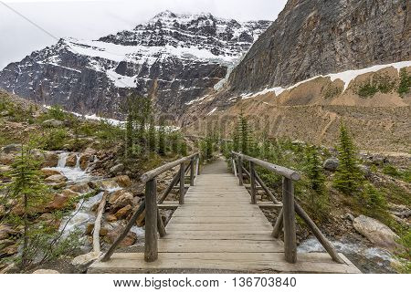 Footbridge Over A Stream In The Canadian Rocky Mountains